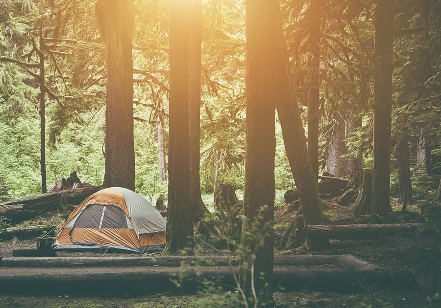 perfect campsite overlooking a gorgeous view with a tent and trees